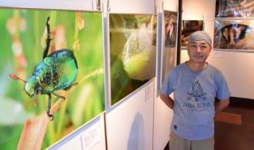 新開孝さんが三股町内外で撮影した作品が並ぶ写真展「ここにいるよ!~小さないのち~」