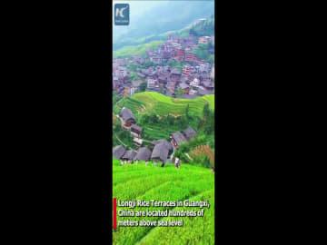 空から見る竜脊棚田 中国広西チワン族自治区