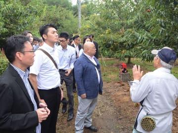 収穫時期を迎えた栗園を見学する参加者=中津川市駒場、榊間信明さん方