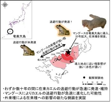 研究の概要(写真:東京農工大の発表資料より)