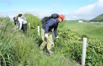 草木を刈り取りながら烏帽子岳西回りルートを点検する阿蘇山遭難事故防止対策協議会のメンバーたち=南阿蘇村