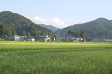 自然豊かな福井県池田町(レディーフォー提供)