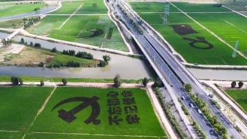 大型田んぼアートで新中国成立70周年祝い 福建省