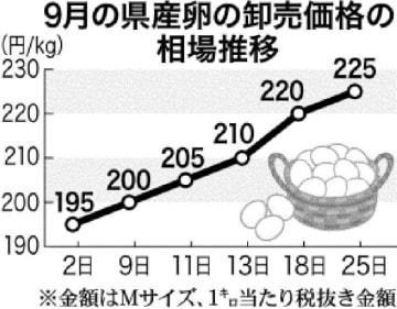 9月の県産卵の卸売価格の相場推移