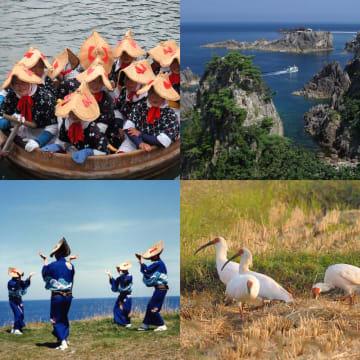 (写真:左上から時計回りに)たらい舟、尖閣湾、トキ、佐渡おけさ
