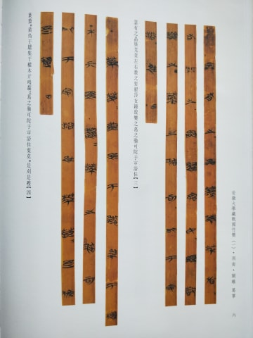 安徽大、所蔵戦国竹簡の研究成果を発表 最古の「詩経」公開