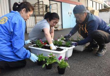 福祉施設に花のプランターを贈るため、早朝から植え付け作業をする都城中央ロータリークラブの会員