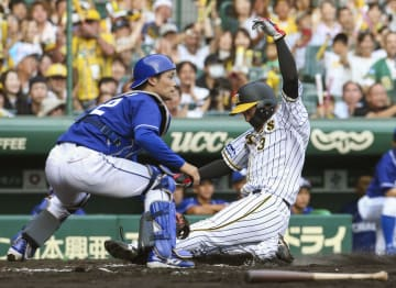 6回阪神1死満塁、高山の中前打で生還する二走大山。捕手加藤=甲子園