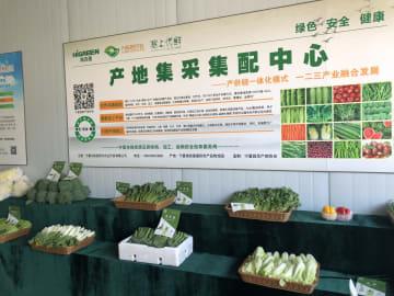 粤港澳大湾区への副食品供給プラットフォームが運用開始