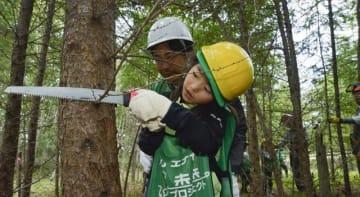 子どもたちも森づくりに参加