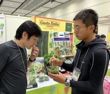アクト中食の展示会で、西洋野菜を飲食店関係者に紹介する山田代表(右)=広島市南区
