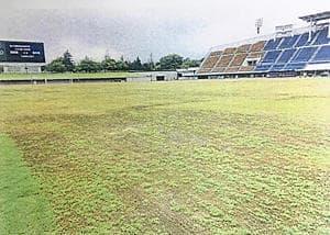 長雨が原因で広い範囲で芝が枯れたスタジアムのピッチ=とうほう・みんなのスタジアム(県都市公園・緑化協会提供)