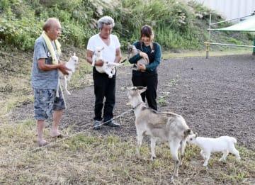 誕生した四つ子の子ヤギを抱く渡辺さん(左)と若月会長(中央)=市原市