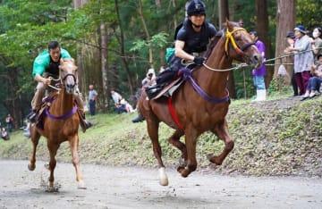 見物人が見守る中、2頭が馬場を駆け抜けた「競べ馬」(8日、和歌山県みなべ町西本庄で)