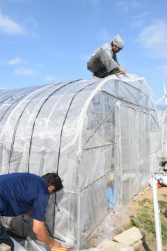 台風19号の接近に備え、農業用ハウスの補強を行うピーマン農家=10日午後1時20分ごろ、神栖市矢田部