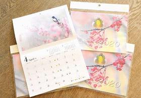 熊谷さんが撮影したカレンダー「愛らしい鳥たち」