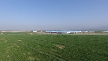 内モンゴル自治区に現代の酪農基地を建設