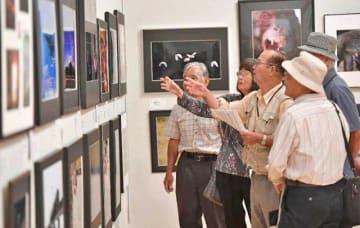 開幕日からにぎわった宮日総合美術展=12日午前、県立美術館