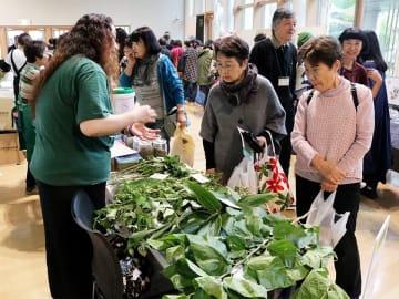 クマザサやスギナなどさまざまな薬草が並ぶ全国薬草シンポジウム=飛騨市古川町若宮、市文化交流センター