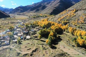 秋色の楚布溝 チベット自治区ラサ市