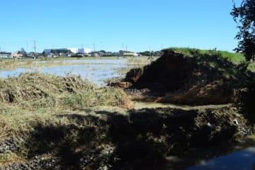 決壊した都幾川の堤防。左側の農地や下流の民家が浸水被害を受けた=13日午前、東松山市石橋