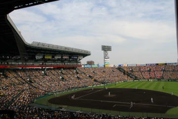 阪神のヤンガービス・ソラーテ内野手が自由契約選手として公示された