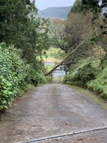 狩野英孝、台風19号による宮城県の被害を報告「実家の栗原市の方に行ってきました」