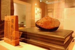 企画展で展示されている岡野隕鉄=京都大学総合博物館