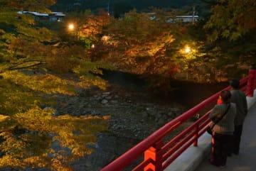 徐々に色づき始めた中野もみじ山の木々を照らし出す夜間ライトアップ=18日午後5時ごろ、黒石市南中野
