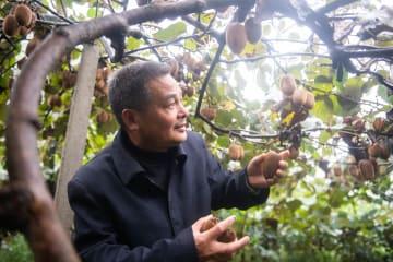 豊かな自然を活かした産業で貧困脱却 湖南省常徳市