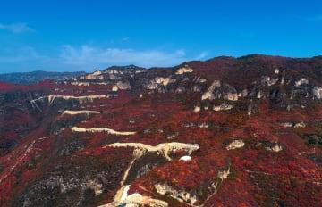 ダイナミックな大峡谷の紅葉が見頃に 河北省渉県