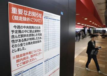 東京競馬場に張り出された、禁止薬物を含む飼料添加物を摂取した可能性のある馬がいることによる「競走除外」を知らせる張り紙=6月撮影