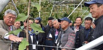山本さん(右)にサクランボの栽培方法について質問する權組合長(左)ら視察団