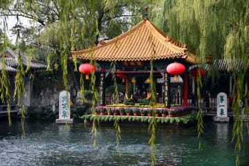 趵突泉公園で菊が満開 山東省済南市