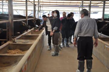 視察ツアーで宮崎牛の畜舎を訪ねた福岡県の飲食店関係者ら